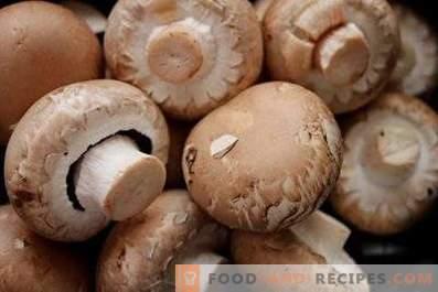Come conservare champignons freschi